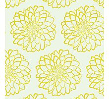 Yellow dahlia pattern on white background Photographic Print