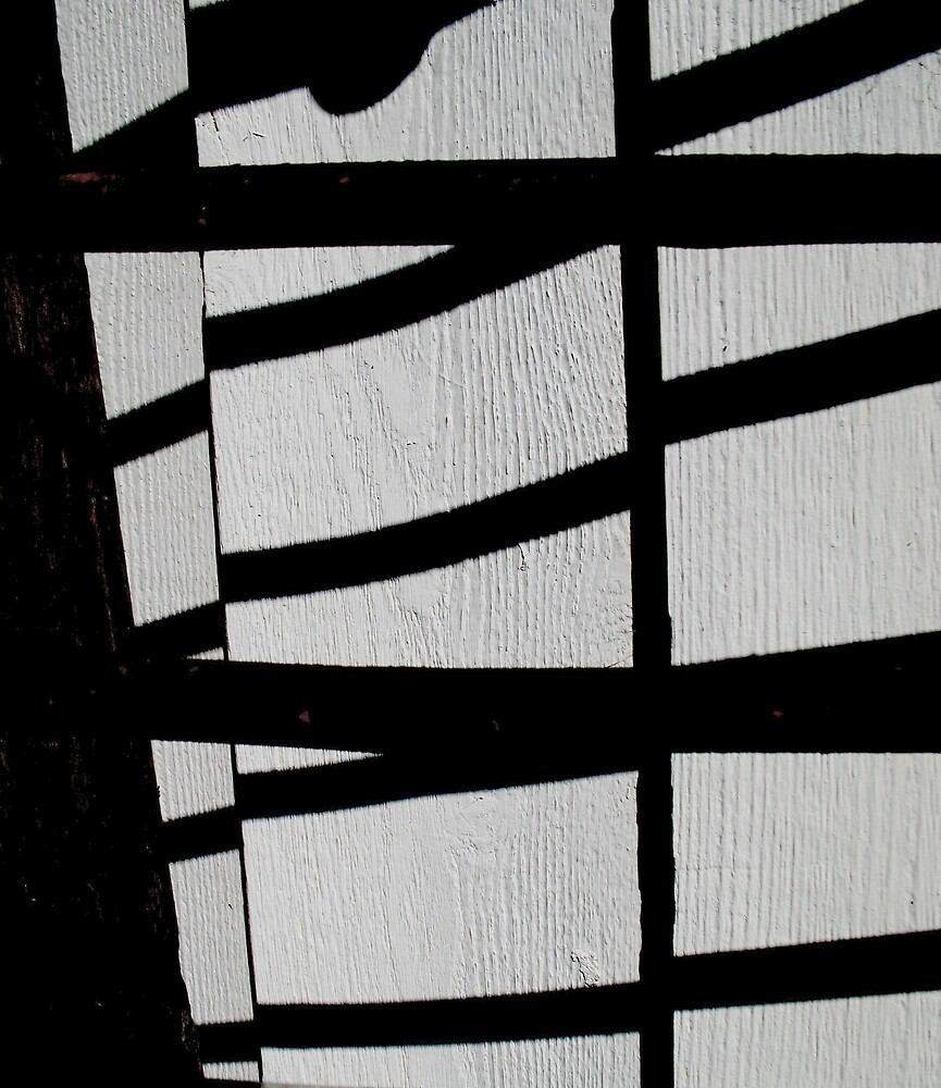 shadow bandit by David Rozario