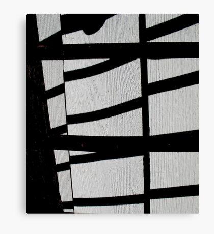 shadow bandit Canvas Print
