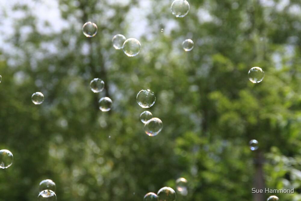 Blowing bubbles by Sue Hammond