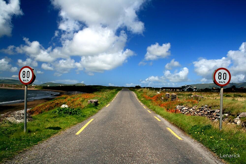 Co. Kerry, Ireland by Lenarick