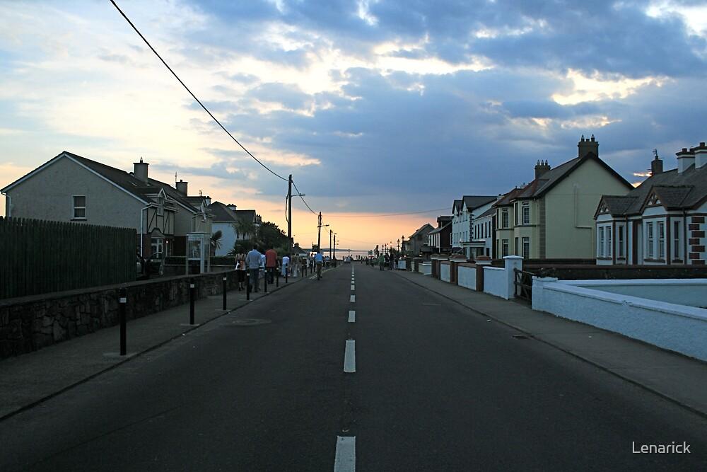 Co. Sligo, Ireland by Lenarick
