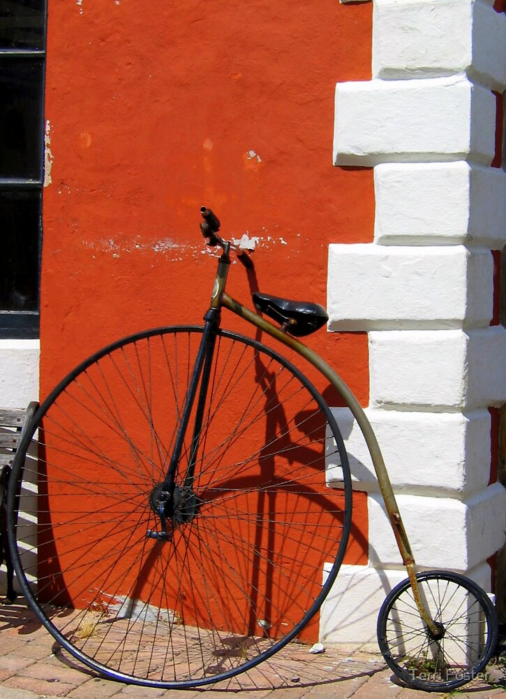 Old bicycle in Bermuda by Terri Foster