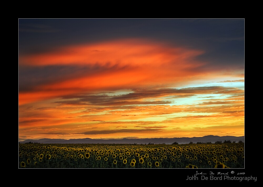 Sunflower Sunset by John  De Bord Photography
