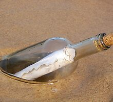 Message In A Bottle by Maria Dryfhout
