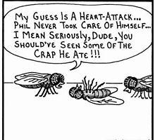 Flys by mcaldero