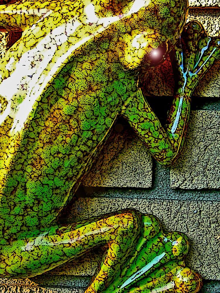 Frog by Erika Benoit