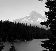 """Mount Hood"" by sheldoni"