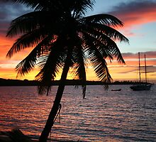 Fiji Island Sunrise 2 by Basa
