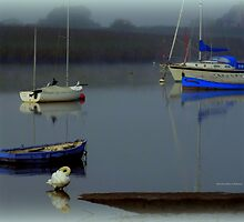 Boats in the Mist by Charmiene Maxwell-batten