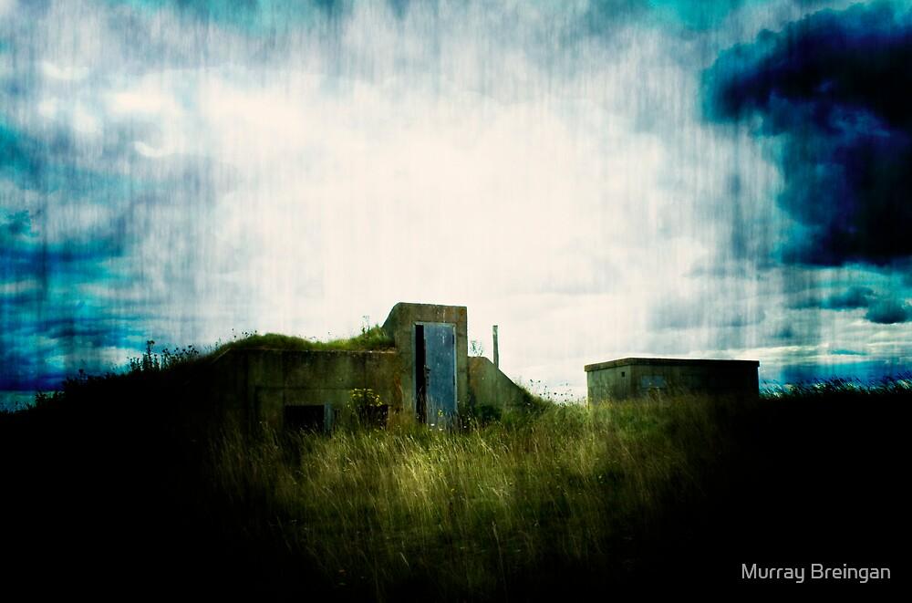 Bunker 2 by Murray Breingan