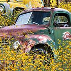Flowers for Studebaker by Candy Gemmill