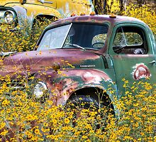 Jerome, Az - Flowers for Studebaker by Candy Gemmill
