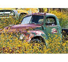 Flowers for Studebaker Photographic Print