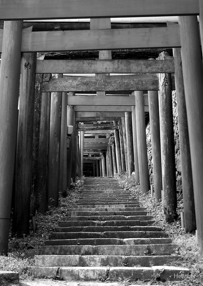 Koyasan torii by Heather