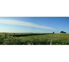 Blue sky and green fields Photographic Print