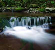 Downstream 3 by Colin Walker