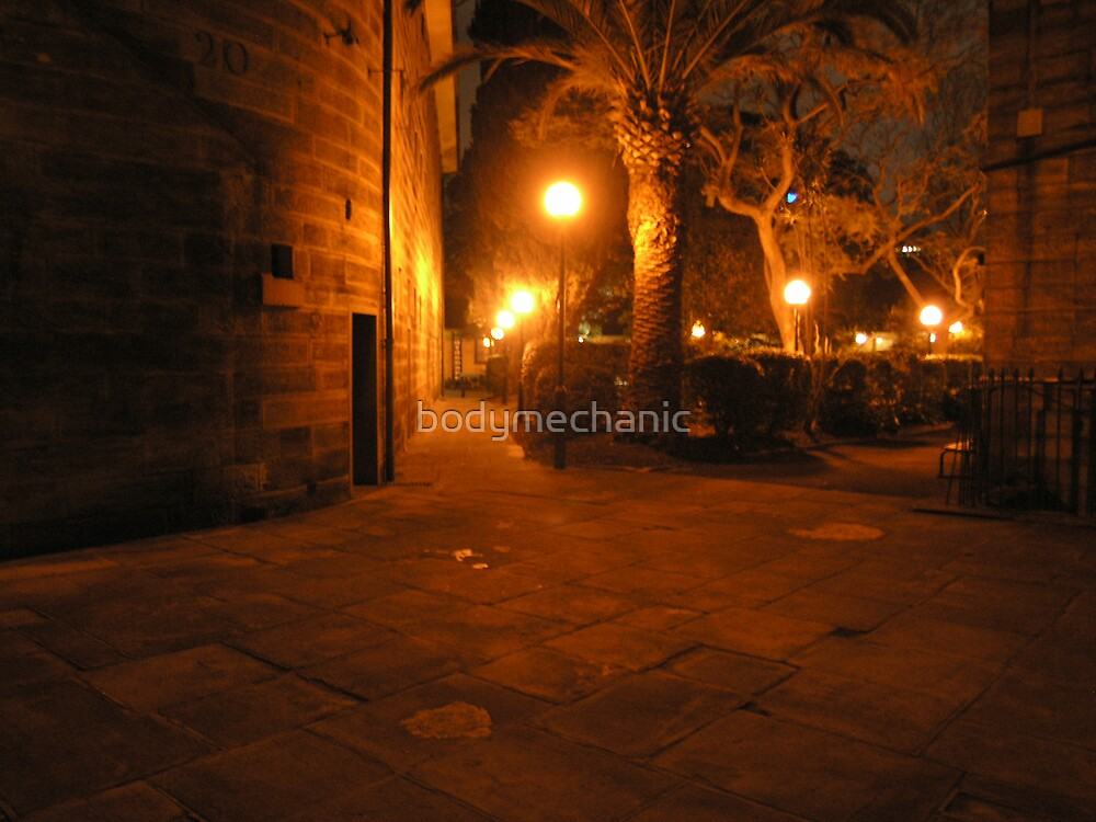 walk and snap by bodymechanic