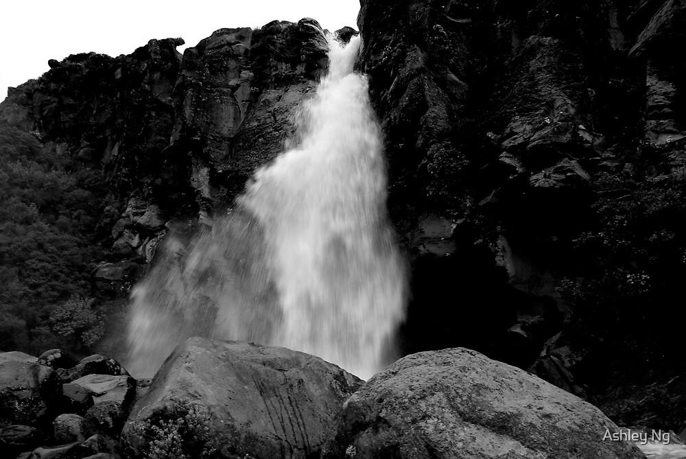 Waterfall I by Ashley Ng