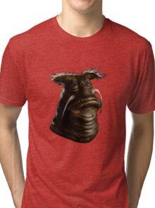Rygel Painting Tri-blend T-Shirt