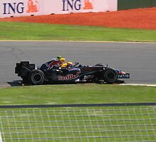 Mark Webber - Red Bull by puppymike