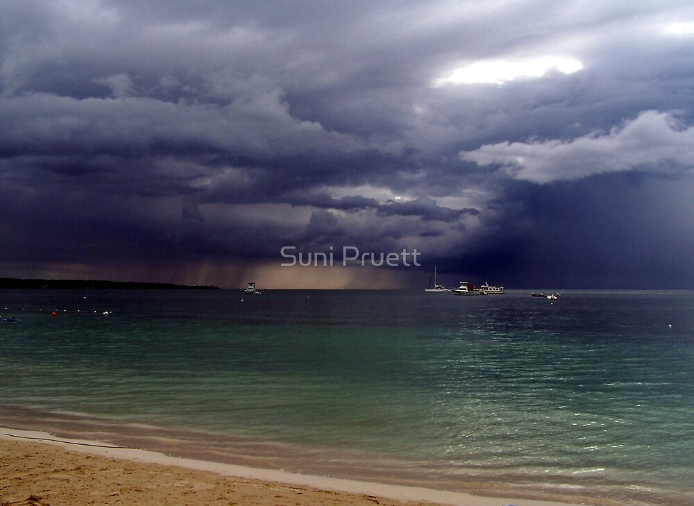 Afternoon Shower by Suni Pruett