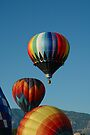 Balloons In The Morning by Holly Werner