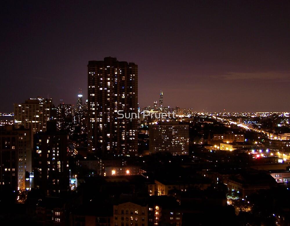 The Beautiful City by Suni Pruett