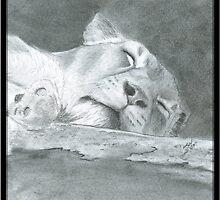 Lioness II by Azure