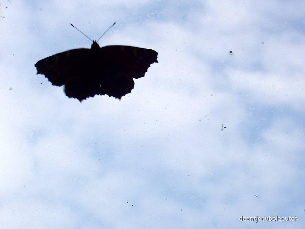 butterfly in the sky by daantjedubbledutch