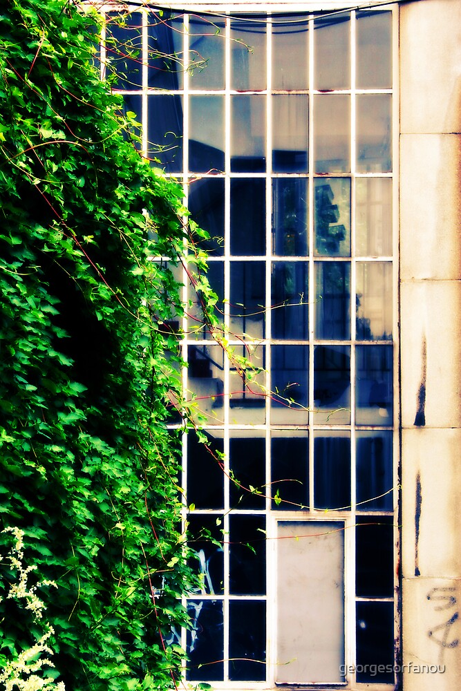 Window by georgesorfanou