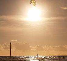 Kite 2 by Tony Moore