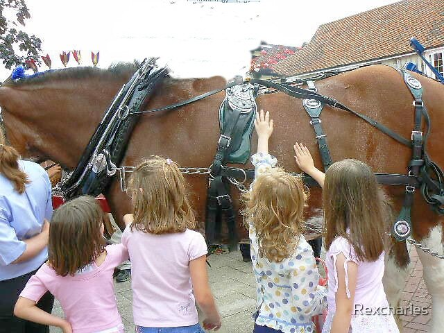 children & shire horses by Rexcharles