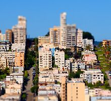 San Francisco by Rob Whiting