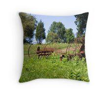Fossils in the Field Throw Pillow