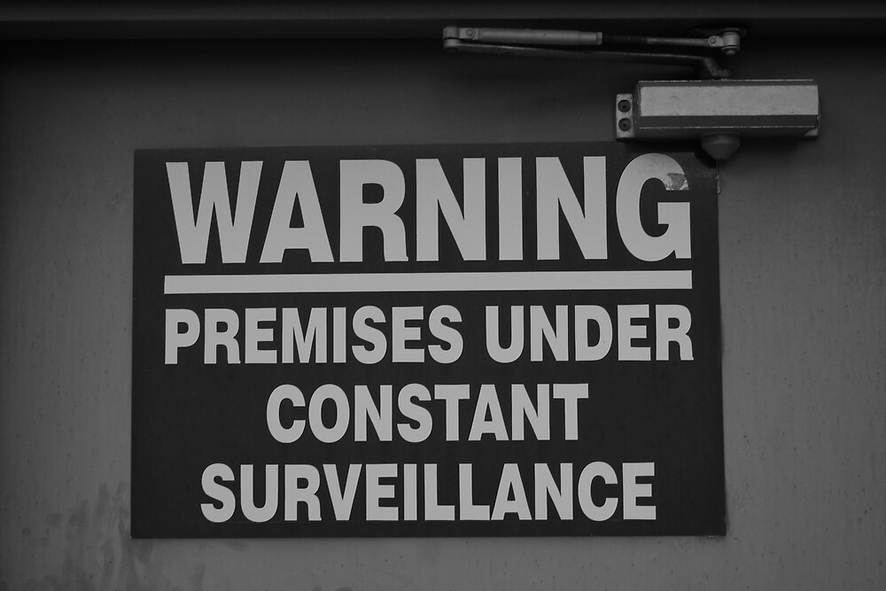 Constant Surveillance - B&W by Jonathan Russell