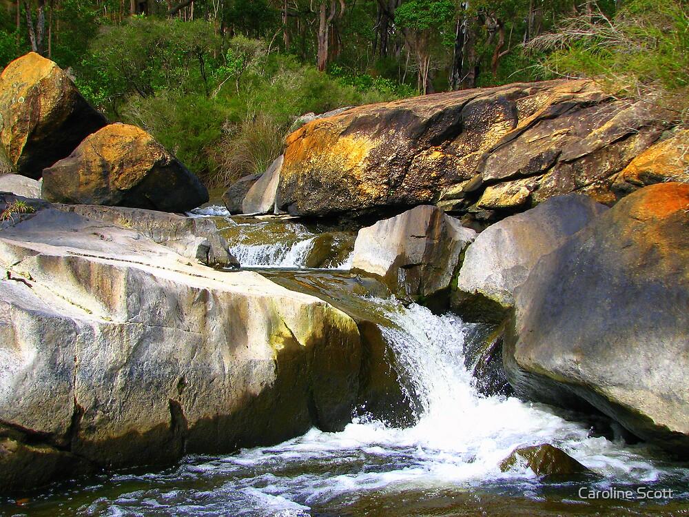 The rapids by Caroline Scott