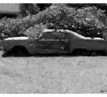 Long Term Parking by Skip Runge