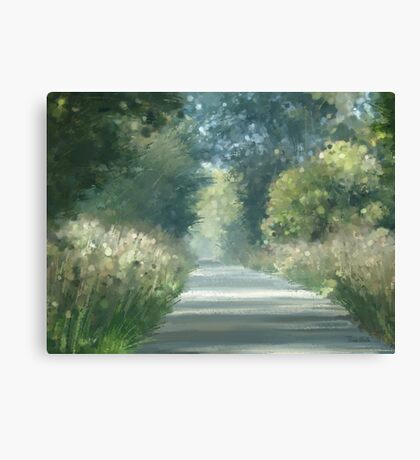 Road back home Canvas Print
