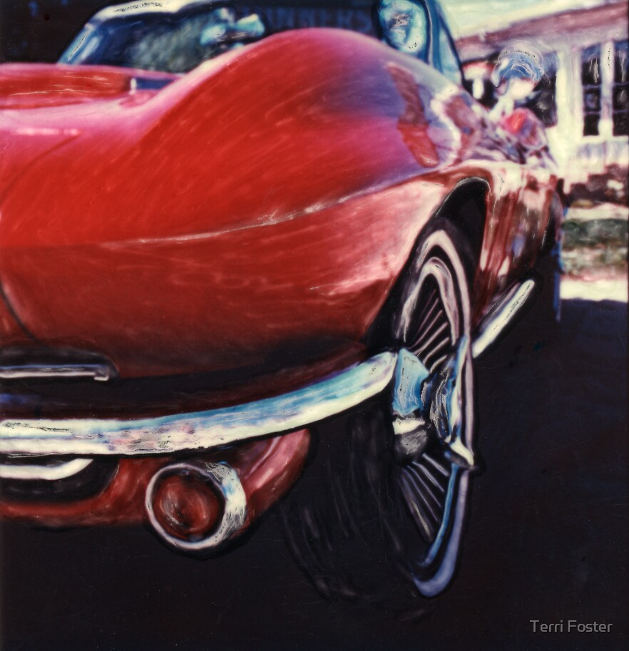 1965 Corvette Stingray  by Terri Foster