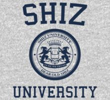 Shiz University - Wicked by Johanna Martinez