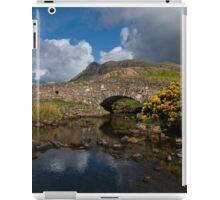 Wasdale Packhorse iPad Case/Skin