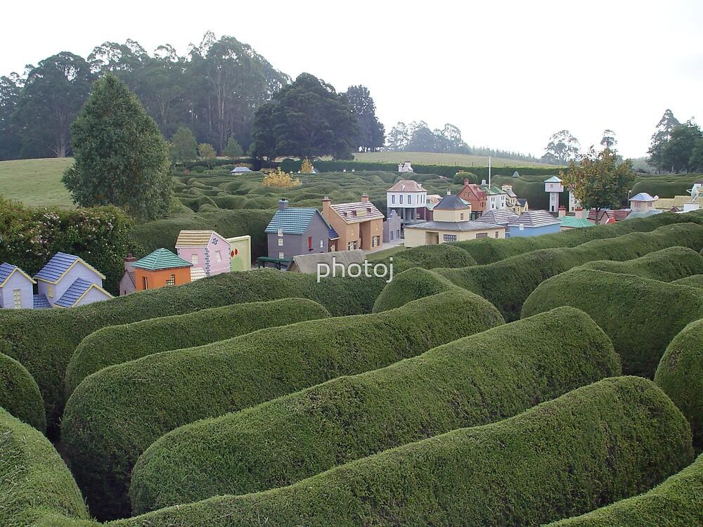 Tasmania's Maze and Minature Town  by photoj