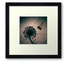 Still II  Framed Print