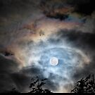 Full Moon Magic by Wendy  Slee