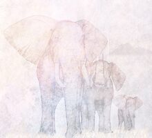 Elephants - Sketch by John Edwards