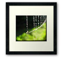 September Rain Framed Print
