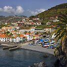 Camara de Lobos Madeira by Lynn Bolt