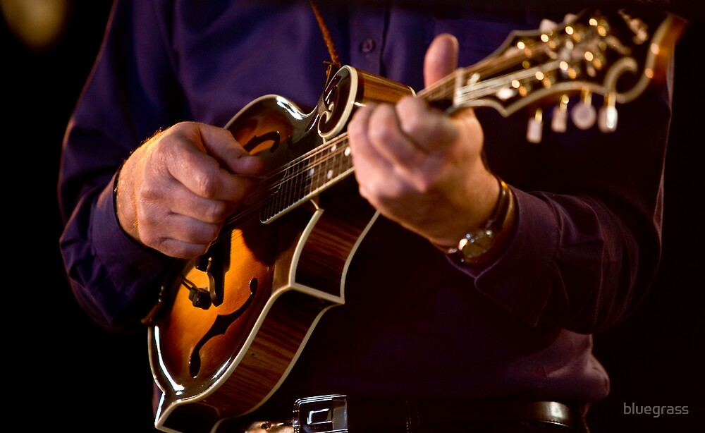 F5 Mandolin 0001 by bluegrass