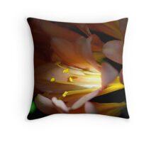 Flower in the light Throw Pillow